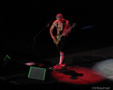 Red Hot Chili Peppers (4)
