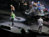 Red Hot Chili Peppers (8)