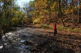 Cedar Falls area