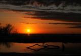 Ft Myers Sunset 2