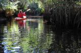 Kayaking at Manatee Park (Lee County)