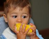 Geo's First Sweet Corn