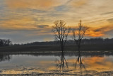 Sunset of the flooded Loramie Creek