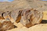 Petrified tree, Makhtesh hagadol (the large Makhtesh or crater)
