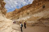 Parsat Nekarot trail, Makhtesh Ramon crater