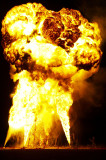 Burning Man Pics