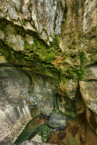 How Stean Gorge, Lofthouse, Nidderdale IMG_2333.jpg