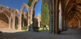 Bellapais Abbey IMG_6349.jpg