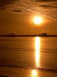 Sun on the Humber IMG_0463.jpg