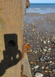 knot hole camera shot of Hornsea beach  IMG_0154.jpg