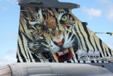 Saab Gripen Tail art