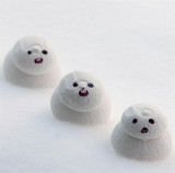 Frosty the snow man and his friends  ----  c'est  assez  la neige chu pu capable