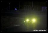 race14-393.jpg