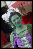 medievalles2011-117.jpg