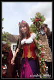 medievalles2011-381.jpg