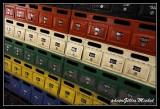 AS2011DURBAN022.jpg