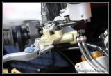 optic2000-273.jpg