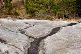 Nature & landscapes For 2010 & 2011