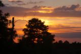 Savannah NWR Sunset