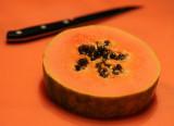 Patterns & Shapes - Papaya