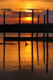 Stony Brook Sunset