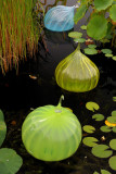 Chihuly at the NYBG
