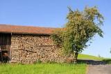 Menzingen (114349)