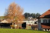 Menzingen (118746)