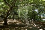 Serra de Montejunto