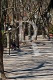 O Parque D. Carlos em 29 de fevereiro de 2012