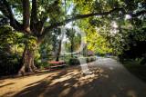 O Parque D. Carlos em 26 de maio de 2012