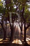 O Parque D. Carlos em 24 de maio de 2012
