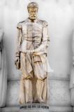 Francisco de Sá de Meneses