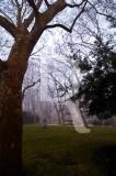 O Parque D. Carlos em 20 de fevereiro de 2012