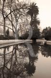 O Parque D. Carlos I em 20 de fevereiro de 2012