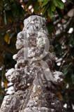 Antigo repuxo manuelino da Vila de Sintra (MN)