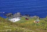 Idyllic on Gimsøya.jpg