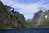 Wild along Reinefjorden.jpg