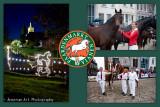 Paardenmarkt Vianen