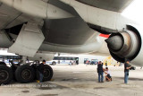 2012 MIA Airfield Tour - on Central Base checking out underside of American Airlines B777-223/ER N755AN
