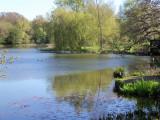 NEWELLS LAKE . 1