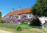 WISTERIA CLAD HOUSE . 1