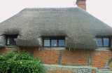 TIMBER FRAMING & THATCH ROOF