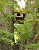 OWL'S NESTING BOX