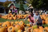 pumpkin_hunting_2011.jpg