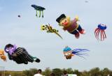 Niagara_Kite_Festival.jpg