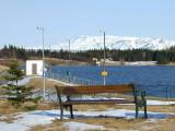 Bekkur við Elliðavatn