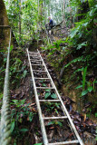 The steep trails