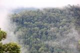 Maliau Basin rim