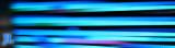 2011 JL banner.jpg